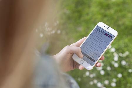 Hand hält Smartphone, Grüne Wiese im Hintergrund